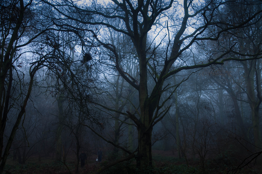 Creepypasta of the Week: �Anansi's Goatman Story� | The Ghost in ...