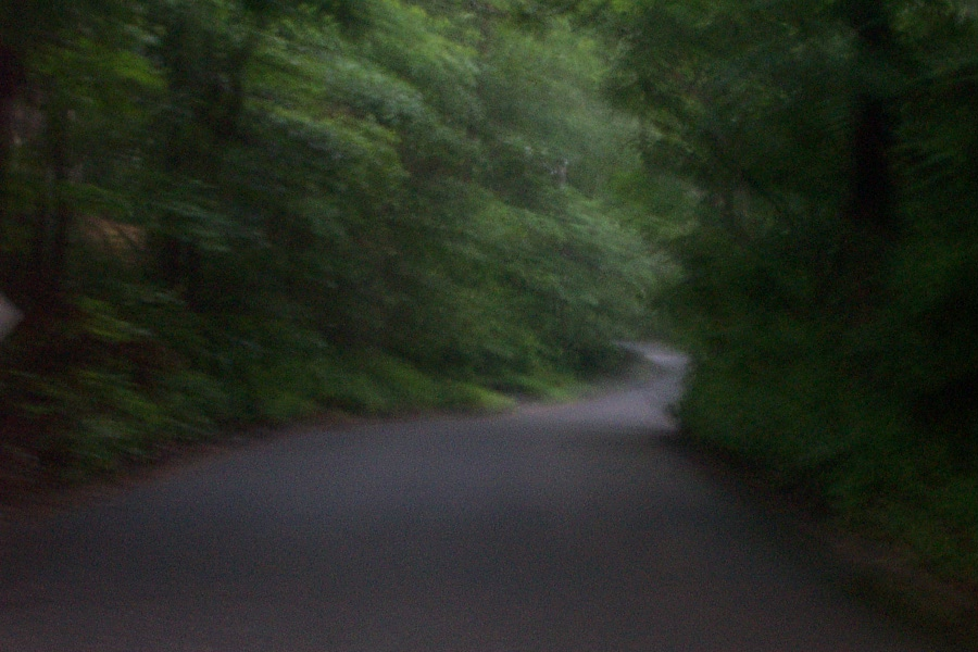 Sweet Hollow Road